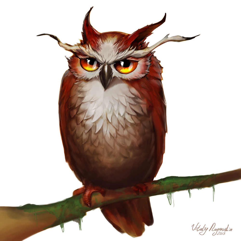 owl_canvas